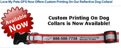 Custom Personalized dog collars