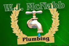 "Pittsburgh Sewer Line Repair Company, McNabb Plumbing, Receives ""The Gold Award"" Award in Plumbing from Trib T…"
