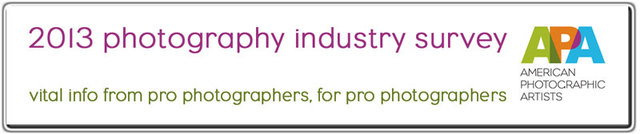 APA 2013 Photography Industry Survey