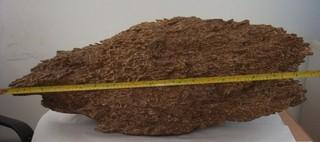 "Agarwood Consulting Announces Availability of Rare ""Diamond Wood"""