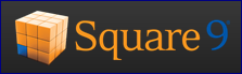 Square 9 Runs for Sandy Hook Elementary