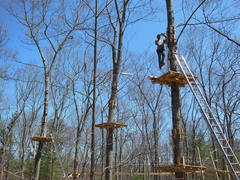 """Some fifty feet above the ground a member of the construction crew works on one of the new Adventure Park at Storrs """"aerial trails"""" or courses. (Photo by Anthony Wellman)"""