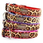 Plush velvet leopard dog collars by Mimi Green for the wild dog in your family.