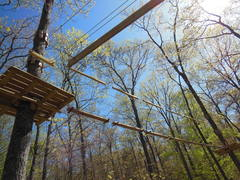 """Some of the """"elements"""" that make up the aerial courses at The Adventure Park at Storrs. (photo by Anthony Wellman)"""