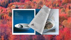 eFlip Standard, make attractive background for eBooks!