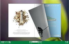 Flash flipping book created with Flipbook Creator!