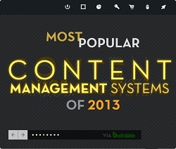 Yellow Bridge Interactive Infographic: Most Popular Content Management Systems of 2013