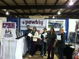 Launch of Pawbly.com
