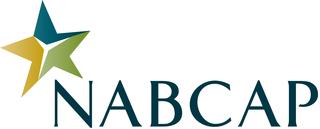 Diversify Inc, Honored With 2013 NABCAP Premier Advisor Award