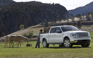 Texas beats out California, Oklahoma, and Florida in truck sales