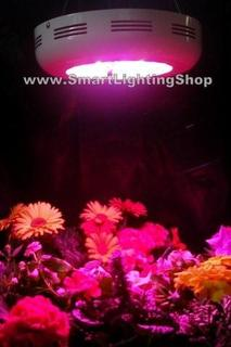 The LED Lighting Store Launches New Website to Meet LED Grow Light Demand