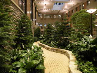 WINTER CHLOROPHYLL FIX, Planted indoor oasis by Planterra represents a growing trend in healthcare design