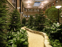 A well screened walking path within the Main Atrium at Henry Ford West Bloomfield Hospital