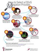 Prolexic Infographic