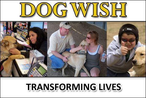 Dog Wish