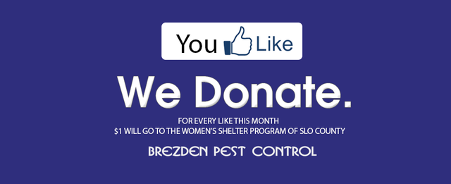 'LIKE' Brezden Pest Control on Facebook and we'll donate $1 for every LIKE to the Women's Shelter Program of San Luis Obispo county.