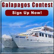 Win a Free Galapagos Cruise!