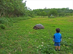 Galapagos wildlife encounter