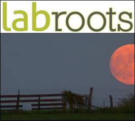 LabRoots Announces the Harvest Moon Image Contest