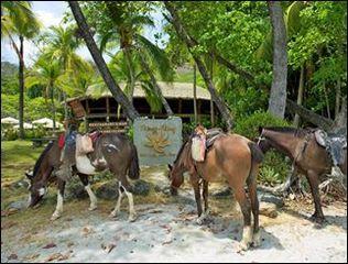 Ylang Ylang Beach Resort Announces Peak of Dry Season in Costa Rica