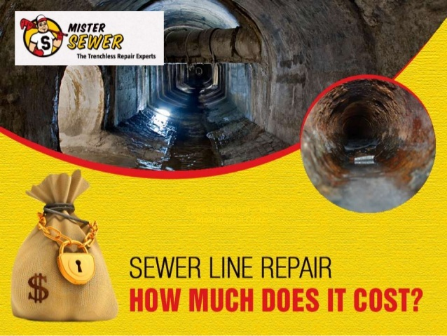 Mister Sewer hopes to help customers cut down on the cost of their sewer line repairs with their informative slide show.