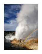 Geysers in Yellowstone National Park.
