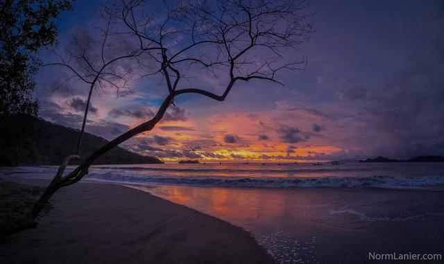 Learn Python in Beach Paradise