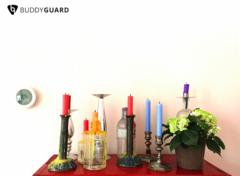 BuddyGuard's Flare looks good in every home!