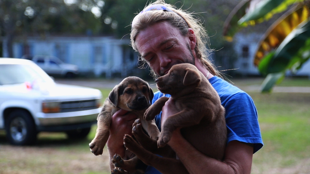Jason Moore rescues two feral puppies in Give Me Shelter.