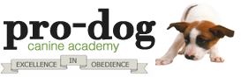 Pro-Dog Canine Academy Celebrates Twenty Years of Business in New Jersey