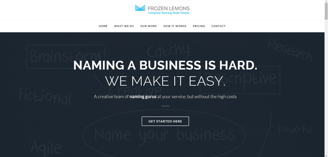 Naming a business is hard. Frozen Lemons makes it easy.