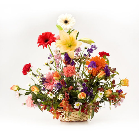 Bangalore flower designs