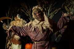 "This scarecrow can scare more than just crows at ""The Haunted Forest of Bavaria"" at The Adventure Park at Frankenmuth, MI. (Photo: Outdoor Ventures)"