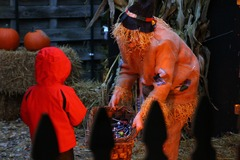 """A young """"Haunted Forest"""" visitor approaches the Park's scarecrow. Just a little bit scary, maybe, but worth it for the candy! (Photo: Outdoor Ventures)"""