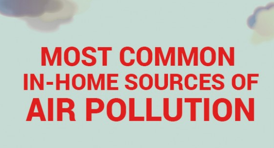 Keep your home toxin and air pollutant free with help from Tudi.