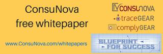 "ConsuNova, Inc. releases new Avionics whitepaper ""Practical Rules for Requirements Capture"""