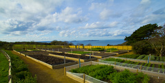 Kitchen gardens are maintained all year and provide year-round produce
