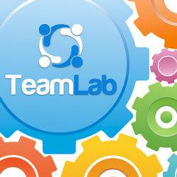 TeamLab API