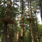 "With 10 color-coded ""Tree Trails"" ranging from beginner to expert, TreeTop Adventures has something for everyone."