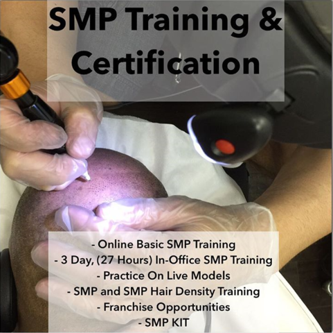 SMP training. SMP online training. Scalp Micropigmentation Online Training. Best SMP online training.