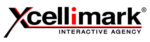 Xcellimark will be presenting on the key areas businesses should focus on for online success.
