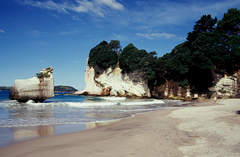 The Coromandel in North Island New Zealand