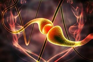 Hello Bio launches first photoactive mGlu5 NAM analgesic