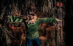 The Haunted Forest Scarecrow is only slightly scary-and a lot of fun.