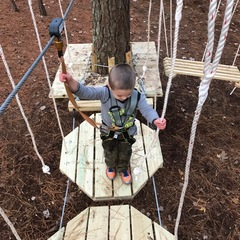 TreeRunner Raleigh Opening Day March 3rd