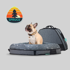 Spruce Launches The World's Smartest Dog Bed