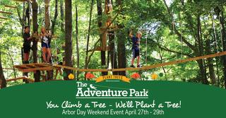 "Adventure Park at the Discovery Museum Says, ""You Climb a Tree, We'll Plant a Tree!"" - Arbor Day Weekend …"