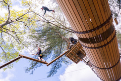 The sky is the limit at TreeTop Adventures!