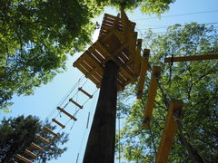 Fun and adventure await up in the trees at The Adventure Park at Nashville.