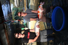 customer holding recent koi harvest as they await what fish will koi fro sale will be offered